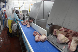DynaClean easy to clean conveyors assist Grobbel's meat processing plant