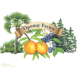 Oponay Farms LLC Improves Fields in Preparation for the Fall U Pick...