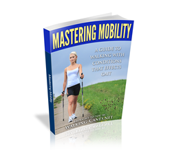 Mastering Mobility ebook