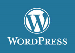 WordPress Hosting With Themes and Plugins