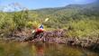 kayaking over a fun easy beaver dam
