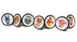 Pushka's new animal knob range!