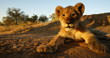Goway Travel is Making 2014 the Year for a Life-Changing Africa...