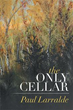 Adult fairytale takes readers into 'The Only Cellar'