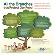 USP Highlights Food Integrity and Safety During National Food Safety...