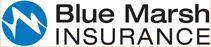 Blue Marsh Insurance