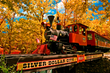The Silver Dollar City steam train is one of more than 30 rides and attractions at the Branson, Missouri theme park.