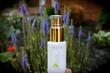 Born Skincare Participates in The Yoga Market as Featured Organic Skin...