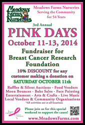 Pink Days 2014