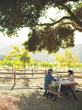 The Best Tasting Room/Vineyard Experience will praise an outstanding Western tasting room or vineyard tour that creates a fun experience out of tasting, while illuminating viticulture and enology.