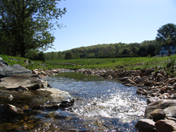 In this stream restoration project in Baltimore County, Maryland, a suburban stream and its floodplain have been reconnected to help control erosion and protect nearby bridges and sewer lines from floods. Credit: Paul Mayer, US EPA