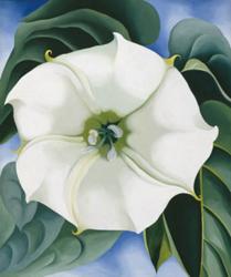 Georgia O'Keeffe: Jimson Weed/White Flower No. 1