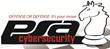 PSA Cybersecurity