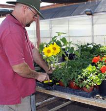 Mesa Community Horticulture