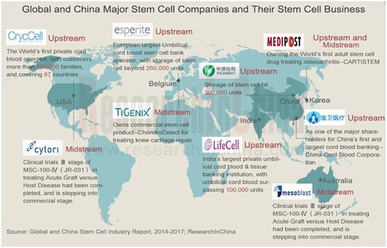 Global And China Stem Cell Industry Report 2014 2017 Now