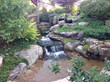 Prime Lawn/IE Design Group Awarded Only Professional Certification In Texas As Aquascape Contractor