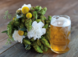 DCBrau and UrbanStems Launch First Ever Hop Bouquet to benefit...