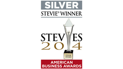 Silver Stevie Award for IT Team of the Year 2014