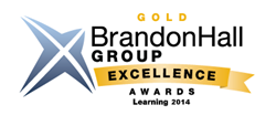 "ICS Learning Group won the 2014 Gold Medal for ""Best Use of Games and Simulations for Learning"" for the operational safety training it developed for an industrial client using 3D simulation and gamification in the Brandon Hall Group Excellence Awards."