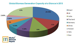 Global Biomass Capacity Addition in 2013