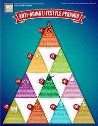 "Infographic - ""Anti-Aging Essentials"" Lifestyle Pyramid"