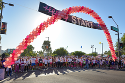 Susan G. Komen Phoenix Race For the Cure 2014