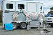 Horses Having a Pyjama Party Raise Eyebrows for Horseland's...