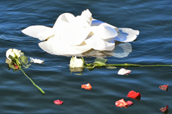 peaceful petal© water burial urn by in the light urns