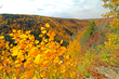 West Virginia Fall Foliage Reports Start Sept. 25, 2014