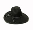 Black wide brimmed fedora hat.