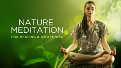 New Course Features Nature Meditation for Healing and Awakening