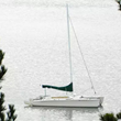 Tomales Bay Sailing In Marin County Launches New Website