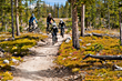 Winter Park Resort-fall-biking