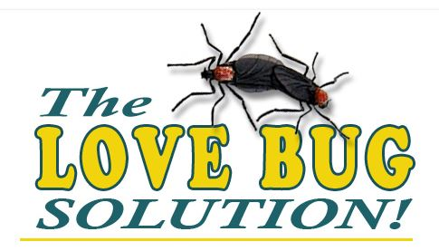 the love bug solution is now available in an aerosol can. Black Bedroom Furniture Sets. Home Design Ideas