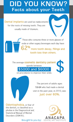 Teeth facts.