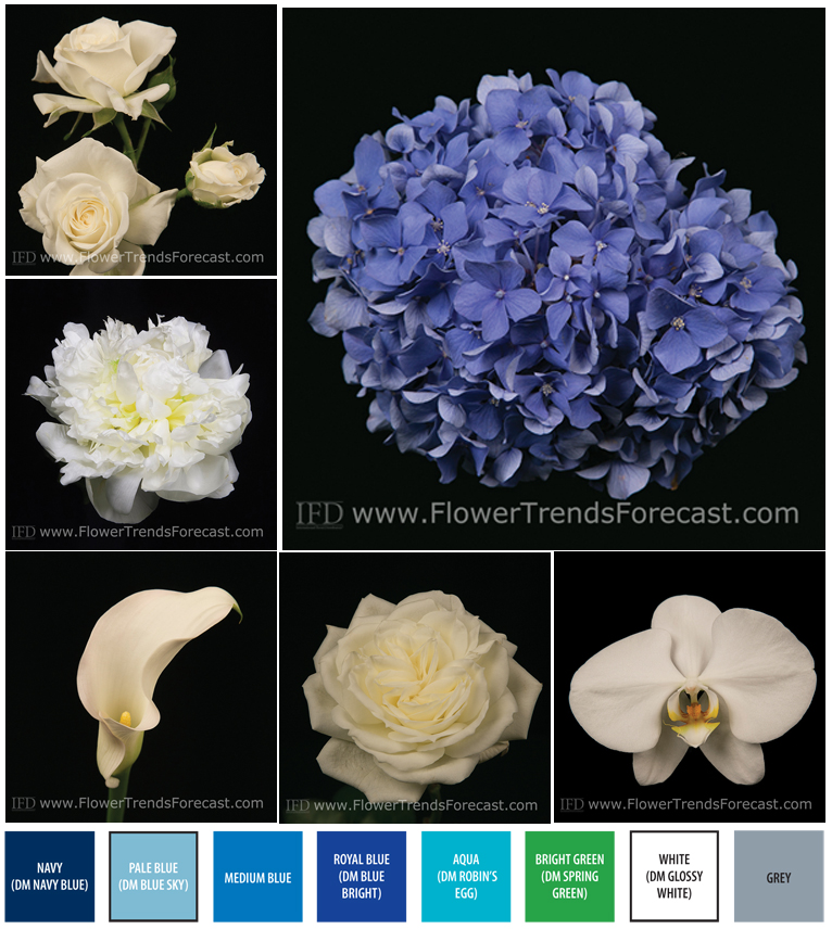 Wedding Flowers Available In October In Australia : International floral distributors ifd to release flower