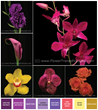 Flower Trends Forecast 2015 to include flower types, stylings and colors for 2015 weddings.
