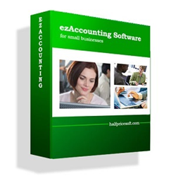Accounting software designed with small businesses in mind