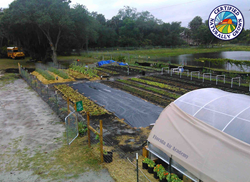 Flair Gardens at Florida AIr Academy earns CNG Designation