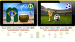 Brazil World Cup: Did Airlines Lose Money? Find Out in Our Case Study,...