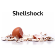 Newly Discovered Shellshock Bug Can Now Be Immediately Detected by...