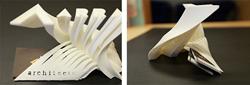 Julia Savastinuk Wins 3D Printing Competition