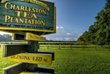 Last year, 60,000 visitors from the United States and abroad visited the Charleston Tea Plantation.