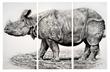 """Artist Rick Shaefer """"Renders Nature"""" in Bellarmine Museum of..."""