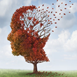 Online CE Course on Traumatic Brain Injury (TBI) and the Effects of Aging Newly Updated at HealthForumOnline