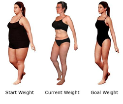 Weight Destroyer Program