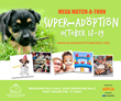Homeless Pets Coalition to Organize Large Scale pet Adoption event in...