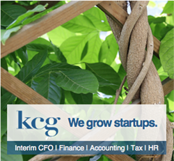 KCG Accounting, Tax, and Finance for Startups