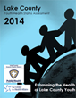 2014 Lake County Youth Assessment Available