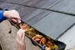 Must-Do Fall Home Maintenance Tips for 2014